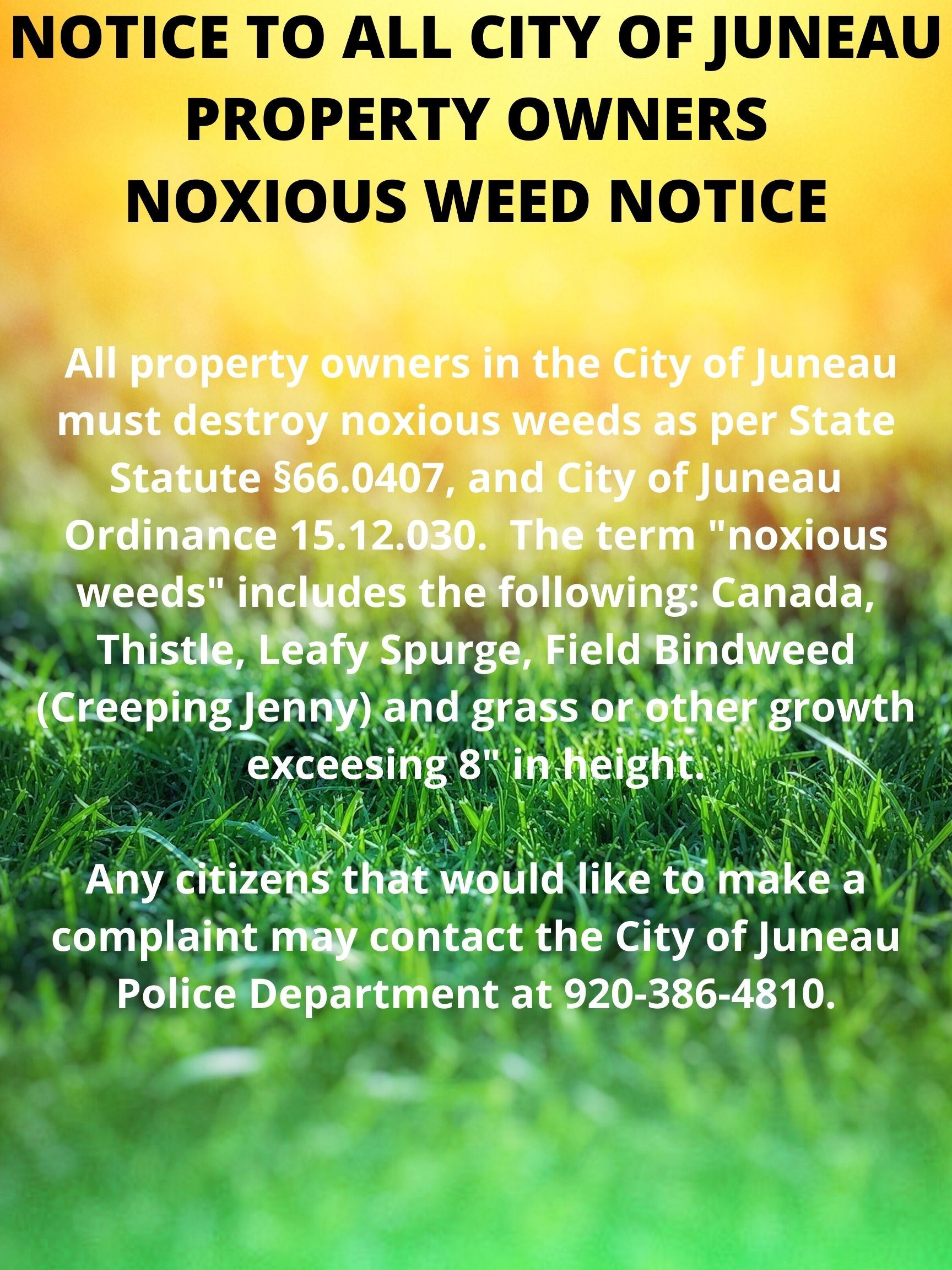 NOTICE TO ALL CITY OF JUNEAU PROPERTY OWNERS NOXIOUS WEED NOTICE